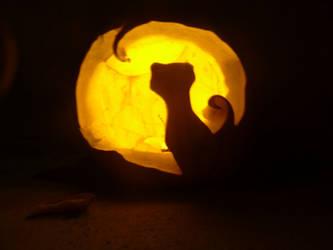Cat On The Moon, Pumpkin