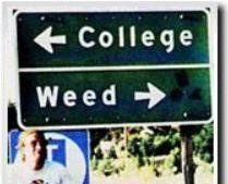 weed or college? by Carpe-omnius