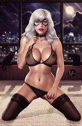 Black Cat (Lingerie) .nude opt. by martaino