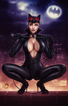 Catwoman .nsfw opt.