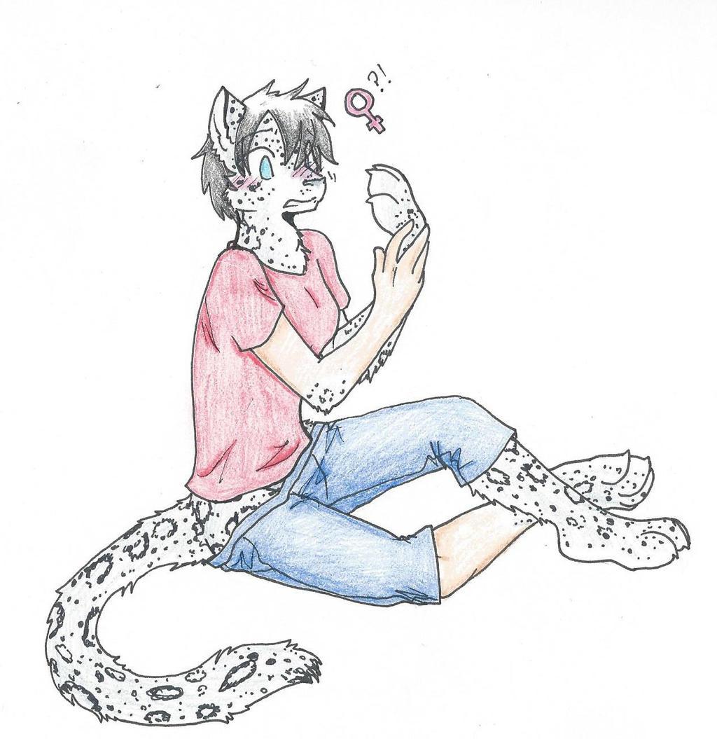 Snowleapard colored