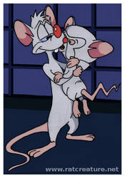 Pinky and Brain: illustration for Best Laid Plans by ratcreature