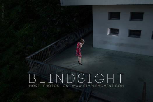 Blindsight 2