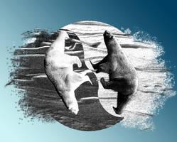 Yin Yang-Arctic by joejonson75