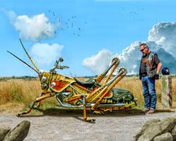 Easy Rider by joejonson75