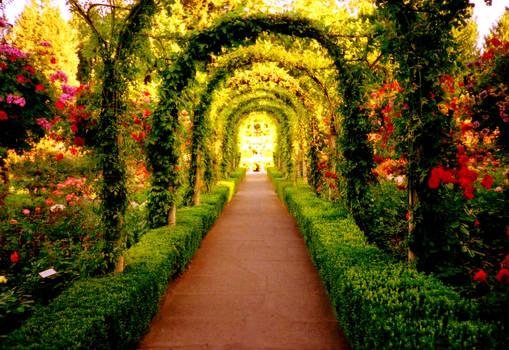 Let us walk in the garden, sir