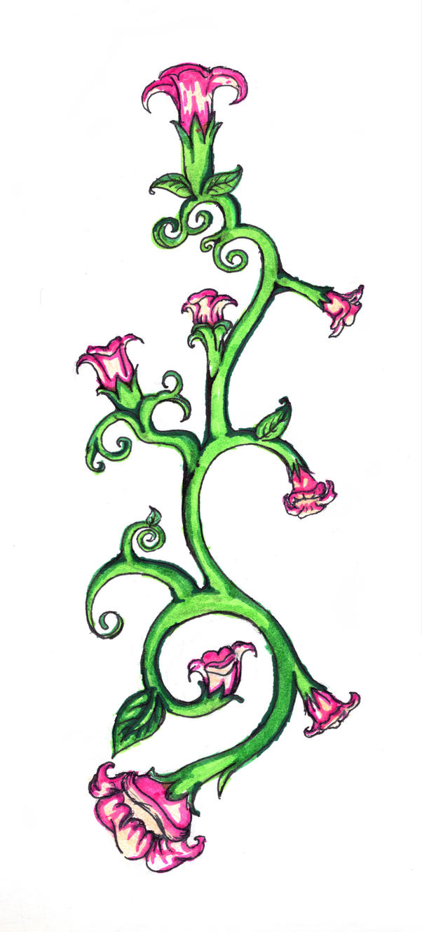 Flower vines drawings