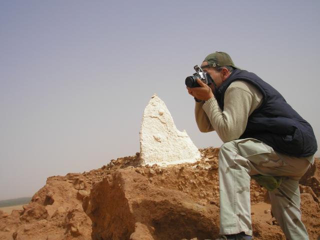 yacertouhami's Profile Picture