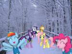 Winter! [PIRL]