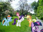 5 Happy Pony 1 Shocked Pony [PIRL]