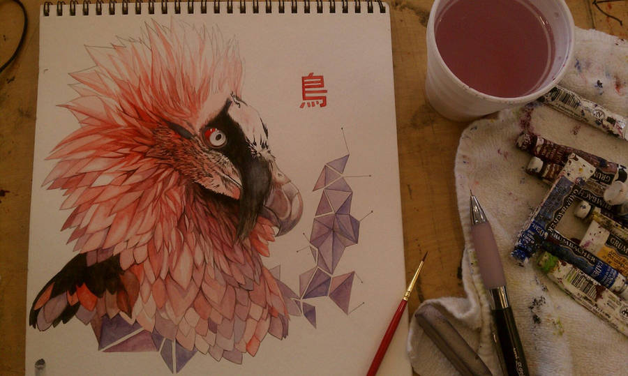 Bearded Vulture (Dragon hehe) by Boywithmeese