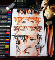 Eyes of Masters