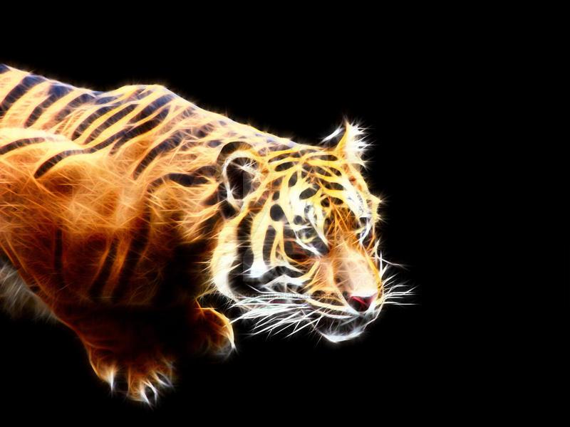 Sumatran Tiger (fractalized) by greyloch-md