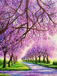 Jacaranda Road, 16x12, Acrylic, Jessica Hamilton by JessicaTHamilton