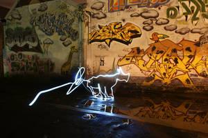 Light Graffiti Sketch of Dog by raggaphoto