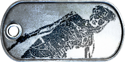 Battlefield 3 French Commander Dog-Tag by CrazyDave55811