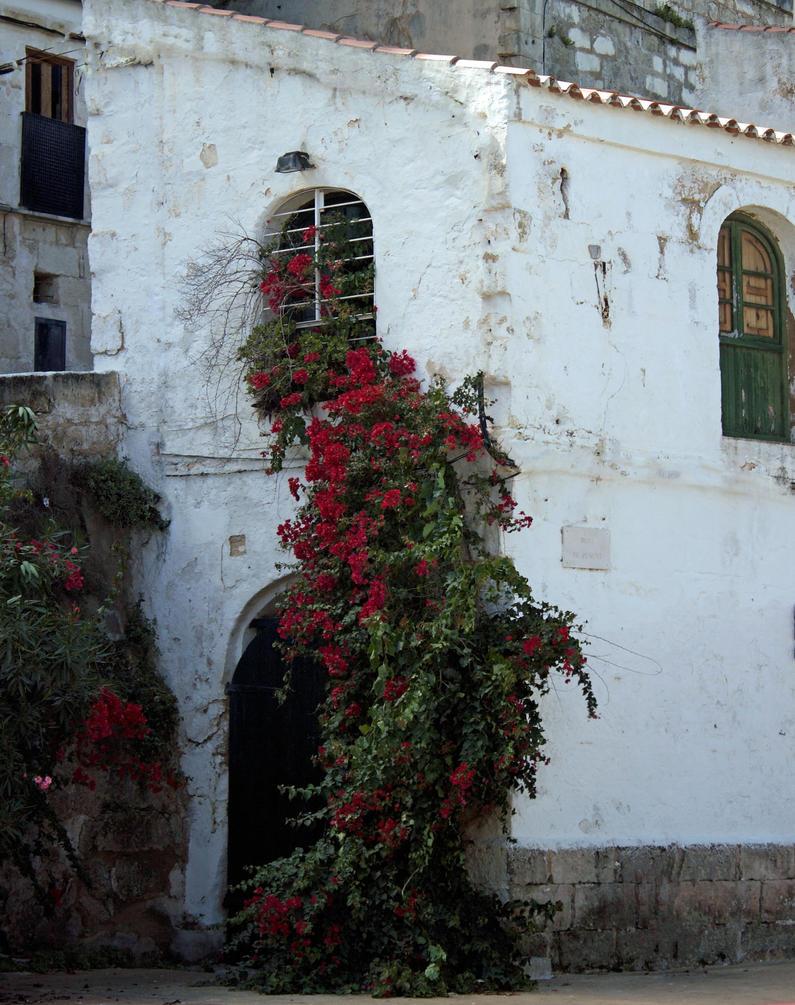 Flowers around door by BlonderMoment