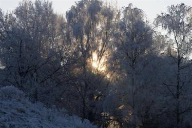Snowy sunset by CeeJa