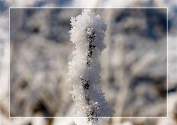 Snow Cristals by CeeJa