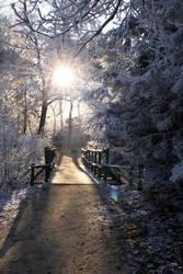 Snowy sunset. by CeeJa