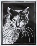 linocut - portrait of a cat Bialka