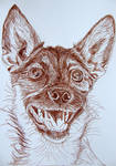 Dog ink drawing