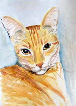 My cat Filutek - watercolor