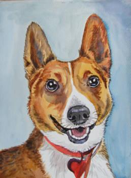 Dog - watercolor