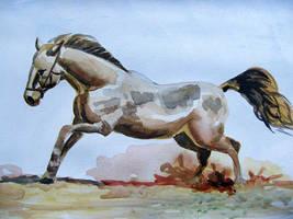 Horse watercolor by gosia-jasklowska