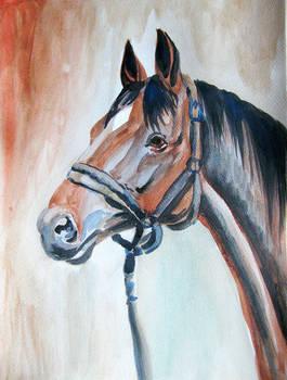 Horse watercolor