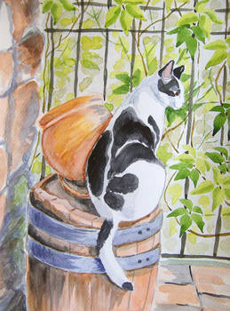 Patryk cat on a barrel - watercolor