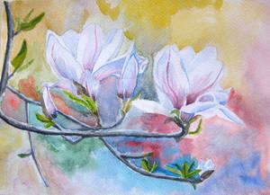 Flowers watercolor