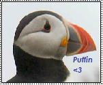 PUFFIN 8D by Ketgirl1992