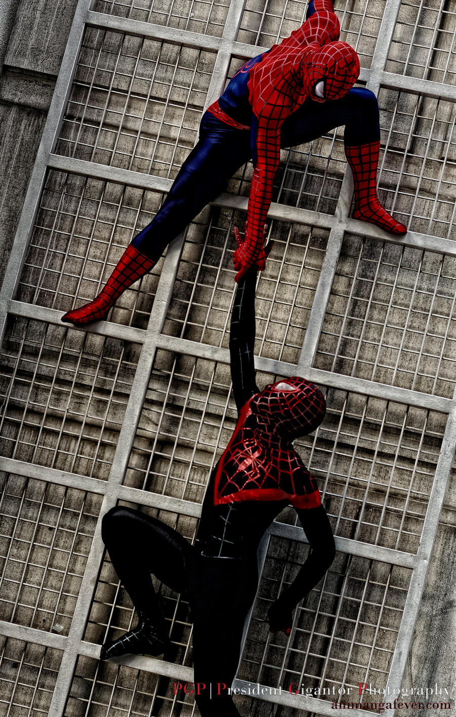 Spider-Man by president-gigantor