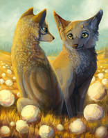 Last sun by Felix-fox