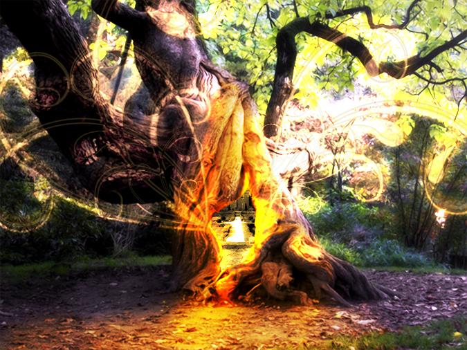 arbre_magique