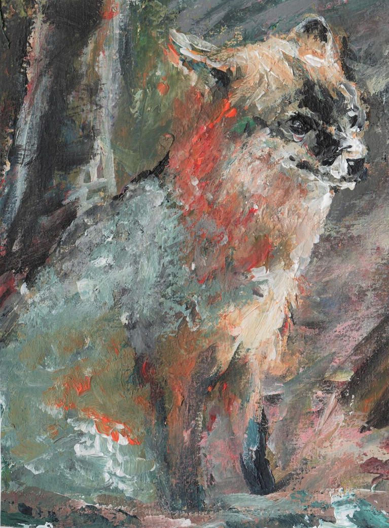 uncertain grey fox by QuirkyLabourer