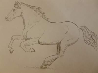 Horse by Julie-Joy