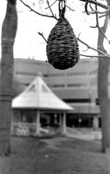 Birdhouse by photozz