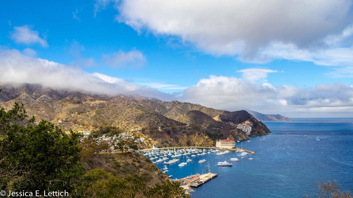 Catalina Island by Vespertine420