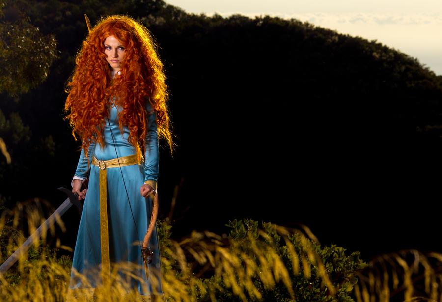 Brave - Golden Fields by BertLePhoto
