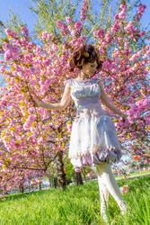 DC Sakura Loli