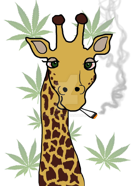 Animals smoking weed tumblr