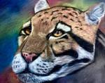Leopard drawing pastels