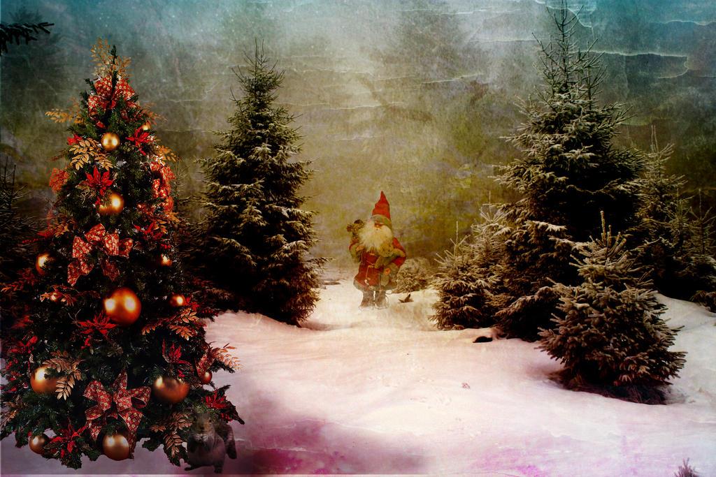 Weihnachtswald - Santa on the Road