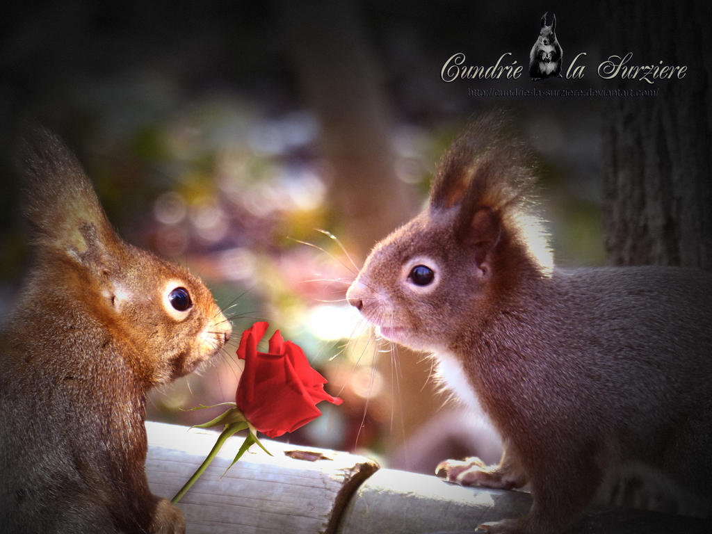 Be My Valentine! by Cundrie-la-Surziere
