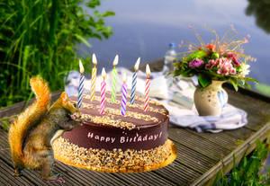 Happy Birthday in May