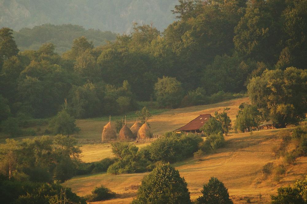 Charms of Romanian Village by Serjia