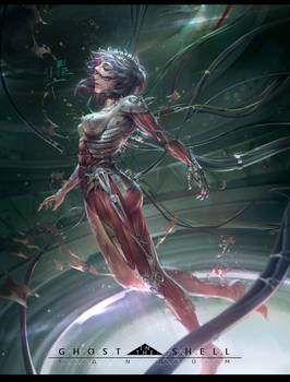 Explore Best Ghostintheshell Art On Deviantart