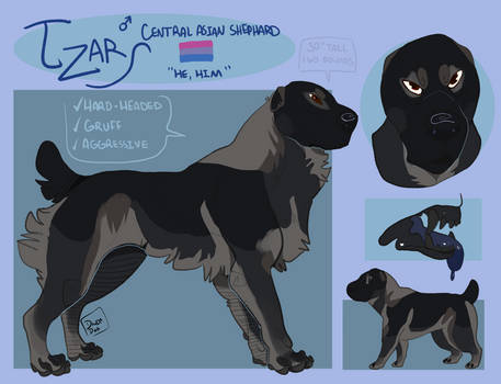 Reference Commission Tzar